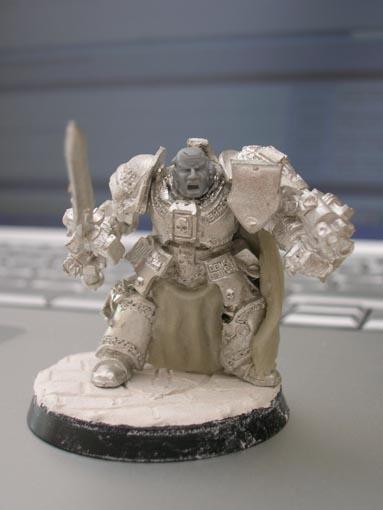 Mon armée de chevaliers gris DSCN2009