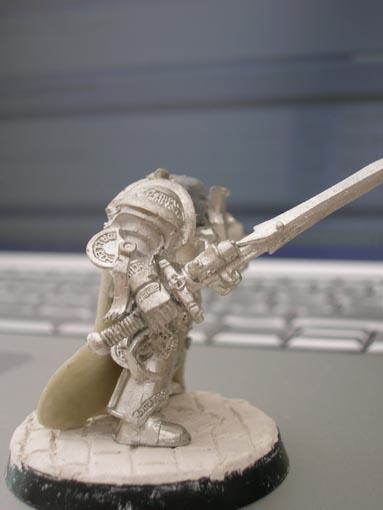 Mon armée de chevaliers gris DSCN2010