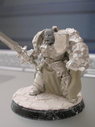Mon armée de chevaliers gris DSCN2012